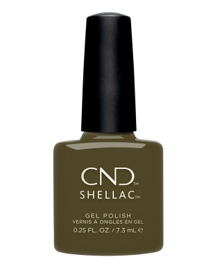Shellac Cap & Gown