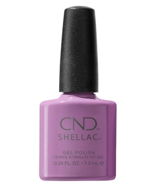 Shellac It's now oar Never