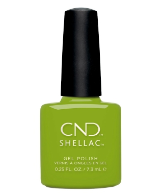 Shellac Crisp Green