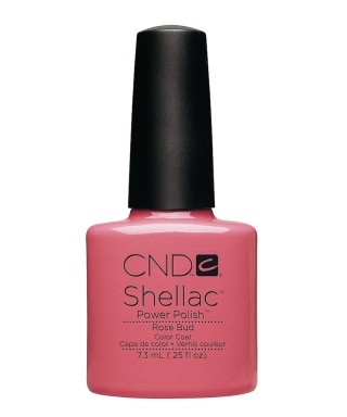 Shellac Rose Bud